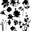 Set of black flower silhouettes - Stock Vector