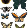 Set of seven different butterflies - Stock Vector
