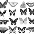 Sixteen gray butterflies — Stock Vector