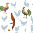 Vector de stock : Roosters on white collection