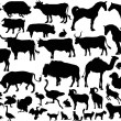 Collection of farm animals silhouettes — Stock Vector #6416234