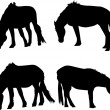 Set of four horses — Stock Vector