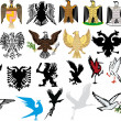 Stock Vector: National heraldic eagles collection