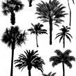 Collection of palm silhouettes — Stock Vector
