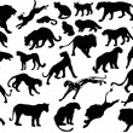 Twenty eight big cat silhouettes — Stock Vector #6417229