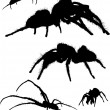 Set of five spider silhouettes — Stock Vector