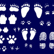 Animals and human tracks collection — Stock Vector #6417510