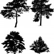 Stock Vector: Four pine silhouettes collection