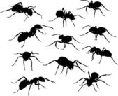 Eleven black ants — Stock Vector