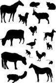 Farm animals silhouette collection — Stock Vector