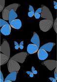 Sfondo blu farfalla tropicale — Vettoriale Stock