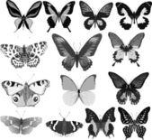 Catorce mariposas grises — Vector de stock
