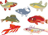 Seven color fishes collection — Stock Vector