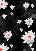 Achtergrond met witte lelie bloemen — Stockvector