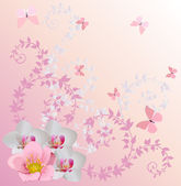 Ight pink orchid decoration and butterflies — Stock Vector