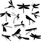 Fourteen dragonfly silhouettes — Stock Vector