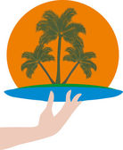 Palms in human hand — Stock Vector