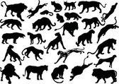 Twenty eight big cat silhouettes — Stock Vector