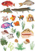 Fish and seaweed set on white — Stock Vector
