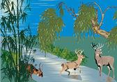 Cervo vicino al fiume nella foresta — Vettoriale Stock