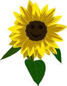 Sunflower flower with smile illustration — Stock Vector