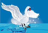 White swan in blue water — Stock Vector