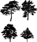 Four pine silhouettes collection — Stock Vector