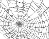 Black spider web — Stock Vector