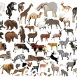 Royalty-Free Stock Vector Image: Huge collection of color animals