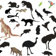 Stock Vector: Set of australianimals and birds on white