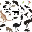 Set of australian animals and birds on white — Stock Vector