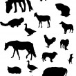 Farm animal silhouettes set — Stok Vektör