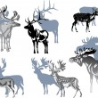 Six grey deers on white — Stock Vector #6649280