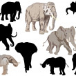 Stock Vector: Set of elephants isolated on white