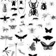 Set of isolated gray insects — Stock Vector #6649717