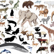 Stock Vector: Set of wild mammals isolated on white