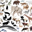Set of wild mammals isolated on white — Stock Vector