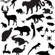 Collection of different animals silhouettes — Stock Vector