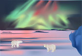 Polar bears under aurora — Stock Vector