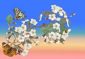 Butterflies and ladybugs on sakura flowers — Stock Vector