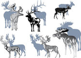 Six grey deers on white — Stock Vector