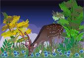 Veado jovem entre flores azuis — Vetor de Stock