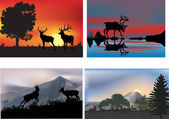 Four illustrations with deers at sunset — Stock Vector