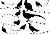 Ten black birds and its tracks — Stock Vector