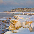 Winter coast covered by ice — Stock fotografie