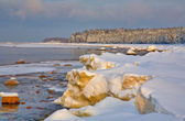 Winter coast covered by ice — Stock Photo