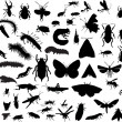 Stock Vector: Many different isolated insects