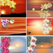 Stock Vector: Set of orchid flowers at sunsets