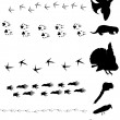 Different birds and animals tracks collection — Stock Vector #6650513