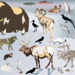 Set of north animals — Vector de stock